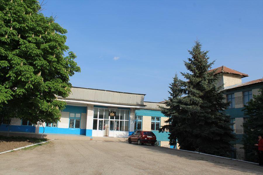 m_gimnaziul cojusna